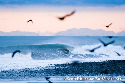 A flock of crows, a set of waves, a mountain range, and the pink sky of a winter evening.