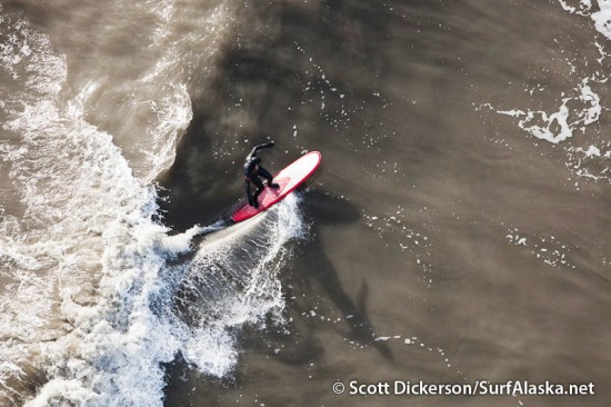 Aerial photo of surfing in Alaska