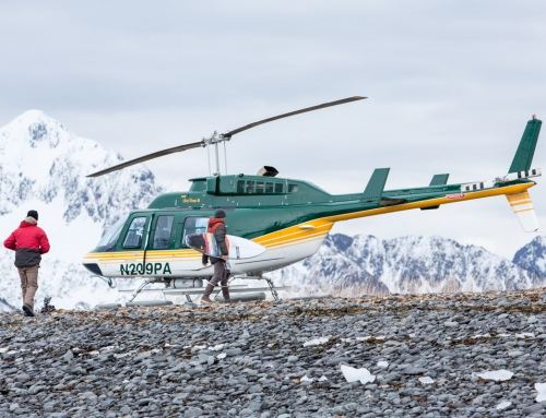 Logistics of an Extreme Surfing Trip: Behind the Scenes with Mountain Dew